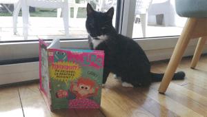 Cannelle, la chatte de Maxandre
