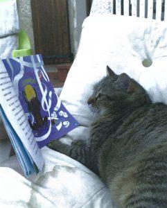 Flip, le chat de Mia